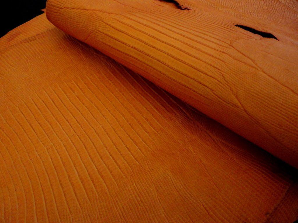 Orange SuperMatte Teju Lizard skin
