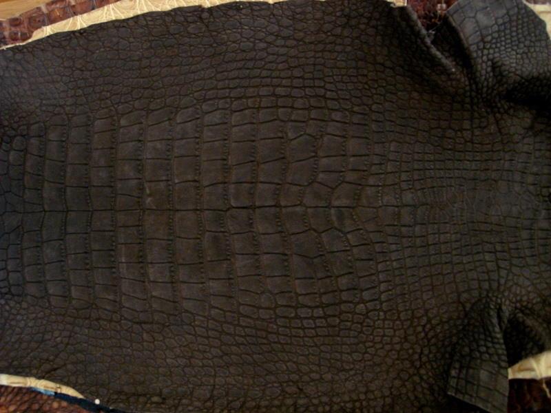 France Croco Alligator skins in stock - Espresso Nubuck Alligator