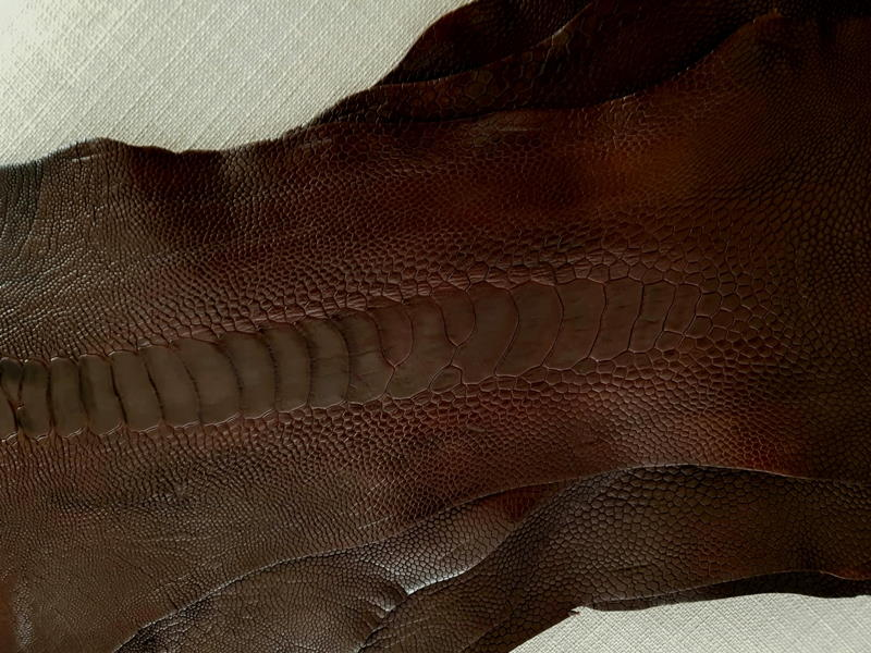 Cigar Brown Ostrich Leg Skin